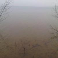 img00032-20110123-1459-jpg