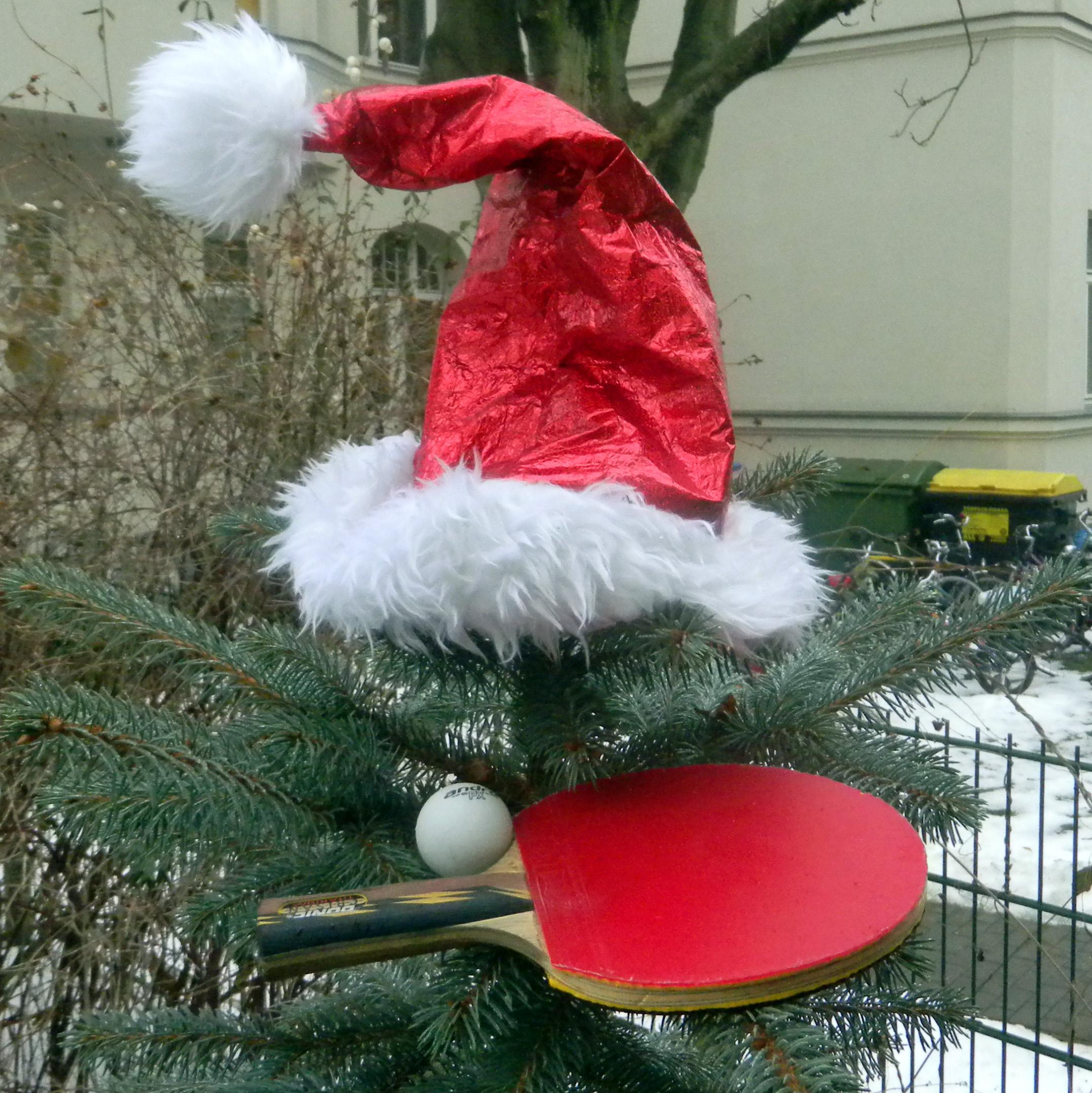 Frohe Weihnachten Und Gesundes Neues Jahr.Leipziger Tischtennisverein Leutzscher Fuchse E V Frohe